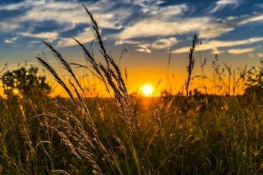 На Троицу в Украине ударит экстремальная жара