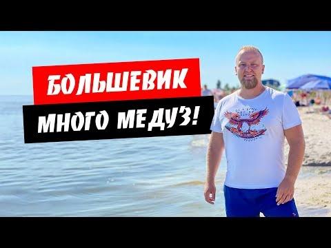 Приморское (Большевик) 2021. Много медуз! Тихий и дикий отдых. Обзор курорта Приморское (Большевик)