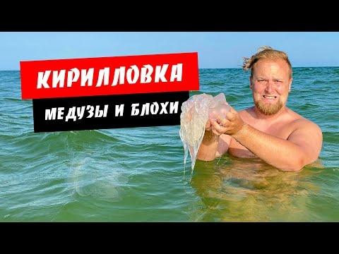 Кирилловка 2021. Медузы и блохи есть! Цены в Кирилловке. Море, пляж, жилье. Отдых в Кирилловке