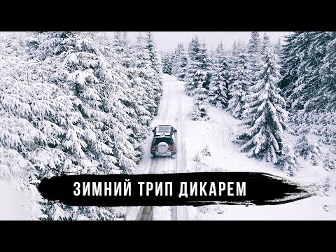 Полесье - зимнее путешествие дикарем на Land Rover Defender. Часть 2