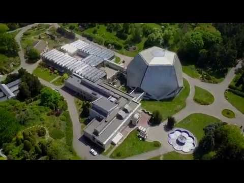 Труханов остров-набережная Оболонь 2020