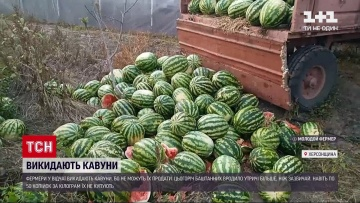 Новости Украины: фермеры в Херсонской области в отчаянии выбрасывают арбузы