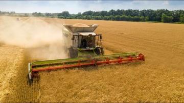 Уборка пшеницы 2021
