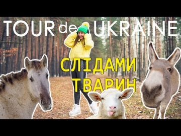 Де відпочити з дітьми / Ферми / Еко-туризм / ослина ферма / овеча ферма / парк Беремицьке