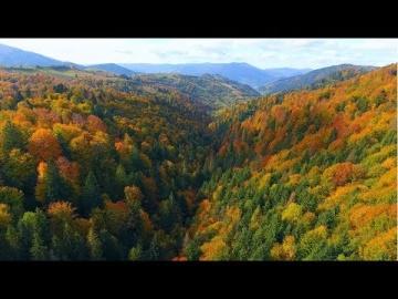 Украина с высоты - Осенние Карпаты.Часть - 2. (Ukraine from a height - Autumn Carpathians) 4 К.