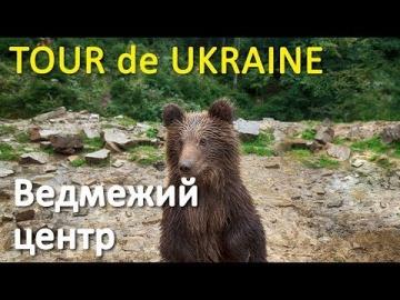 Центр реабілітації бурого ведмедя