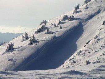 В Карпатах начался снегопад: туристам не рекомендуют идти в горы