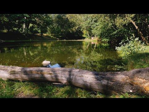 Житомир Осенний - р. Каменка. Часть 3 ( Zhitomir Autumn - the river Kamyanka) 4К -ВИДЕО