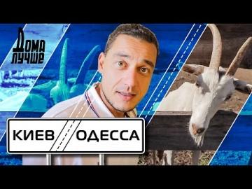 Дома лучше! Киев-Одесса: Белая Церковь